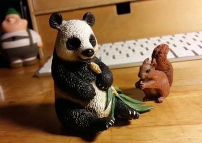 Neues Schleich-Tier kaufen ;)